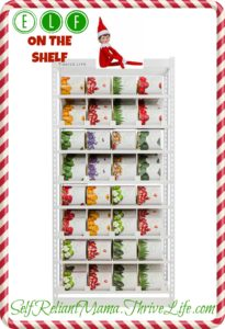 thrive-elf-on-the-shelf-2